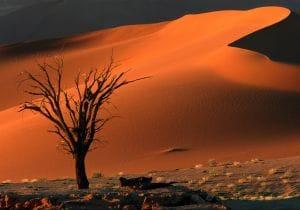 Namibia, viaggio indimenticabile in 5 tappe