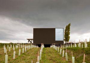 L'architettura incontra il vino