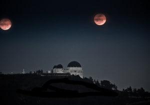 Los Angeles: i luoghi preferiti di Moby