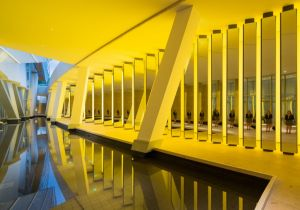 Olafur Eliasson: due nuove mostre con Louis Vuitton