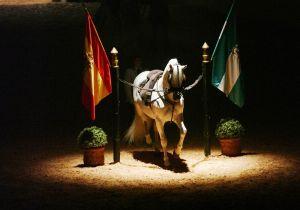 Spagna, 5 cose da non perdere a Jerez de la Frontera