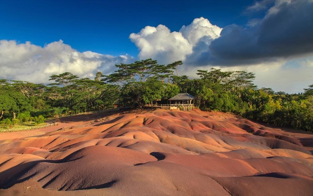 foresta-pluviale-mauritius
