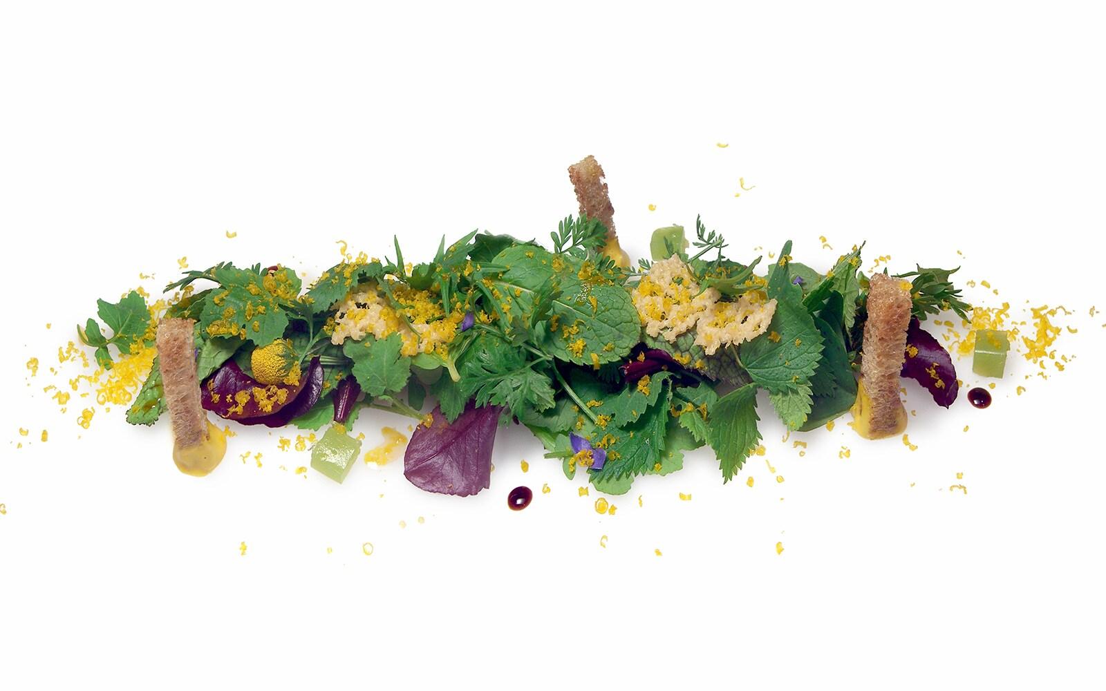 piatto, Bottura, mostra