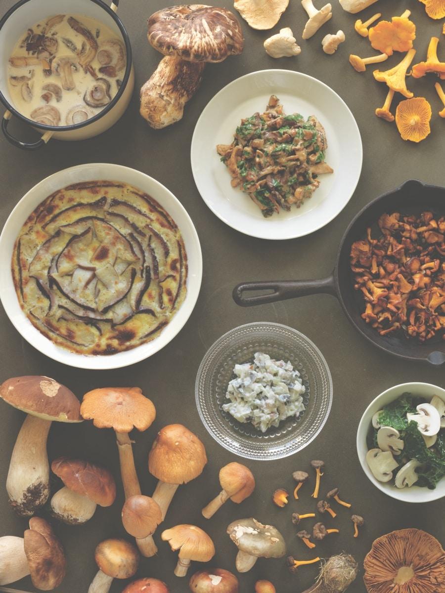 Verdure - I funghi