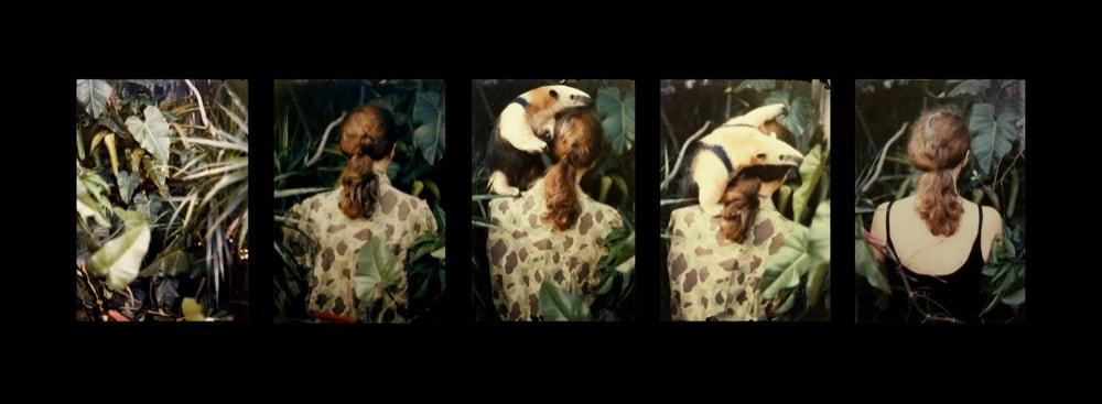 BttF_Galeria Aural_A_GEIGER_Camouflage_2365