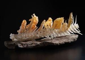 Isole Faroe: l'alta cucina premiata con la prima stella Michelin