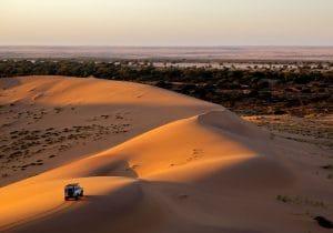 In Namibia stregati da safari e natura