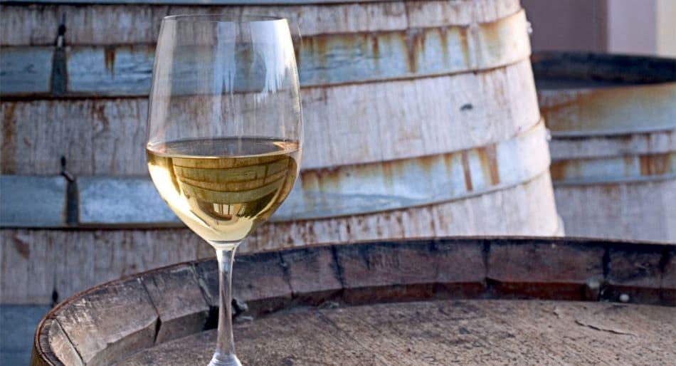 vini bianchi estate