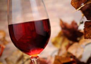 Vini rossi per l'autunno