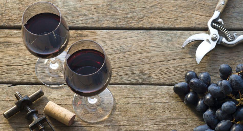 malbec vino migliore