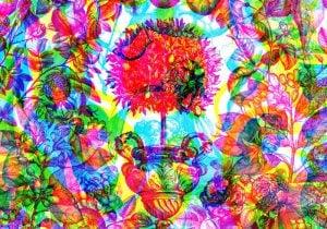 Profumi uomo: 10 fragranze per l'estate a base di limone