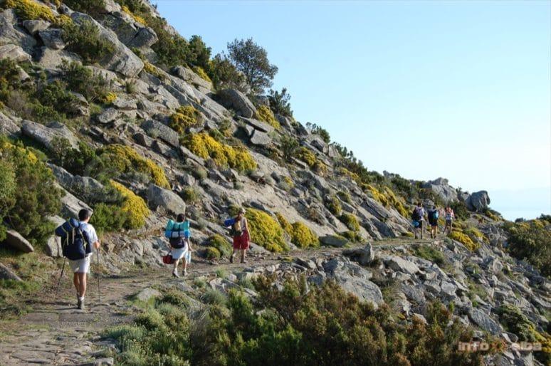 8 trekking