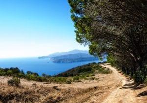 Estate all'Elba, tra mare natura e tanto sport