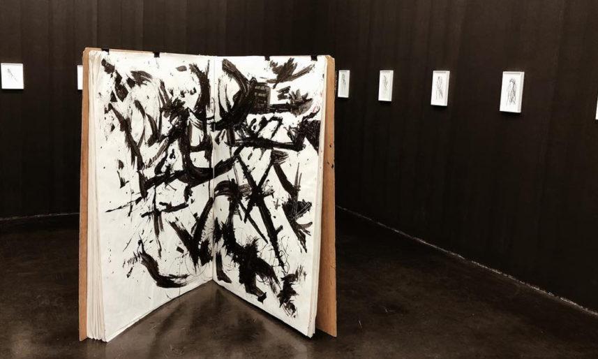 Lutz-Bacher-The-Big-Book-2013-Galerie-Buchholz