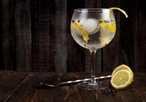 Gin, guida all'assaggio: cos'è, come gustarlo, come riconoscerne uno buono