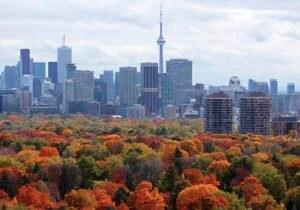 Toronto: nuova capitale di arte, design e del buon vino