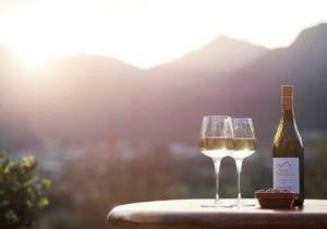 Vacanze... al buon vino!