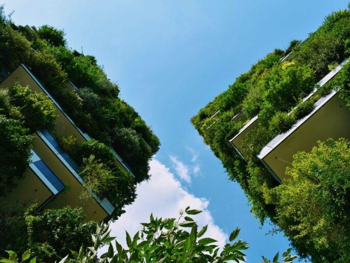 casa-post-covid-verde-e-spazi-esterni
